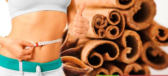 чай для похудения доктор селезнев купить