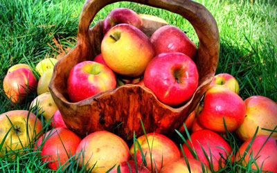 противопоказания к диете на яблоках